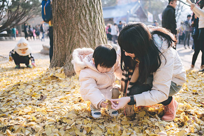 family-wedding-korea-seoul-Nami-island-012