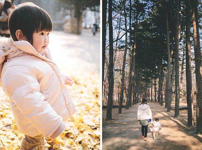 family-wedding-korea-seoul-Nami-island-015